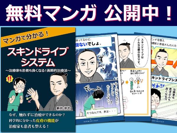 新井洋次さんの まんが電子書籍 『マンガで分かる! スキンドライブシステム』